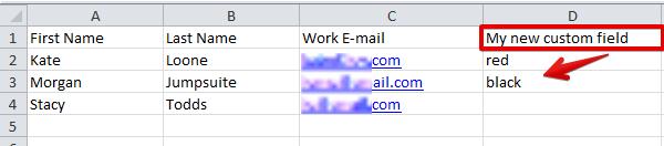 Custom fields import